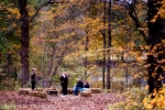 Riverside Fall Festival on Sunday, October 16 at Ramsaysburg Historic Homestead