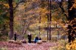Riverside Fall Festival on Sunday, October 16 at Ramsaysburg Historic Homestead
