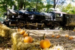 Great Pumpkin Train - Weekends, Sept. 29-Oct. 28